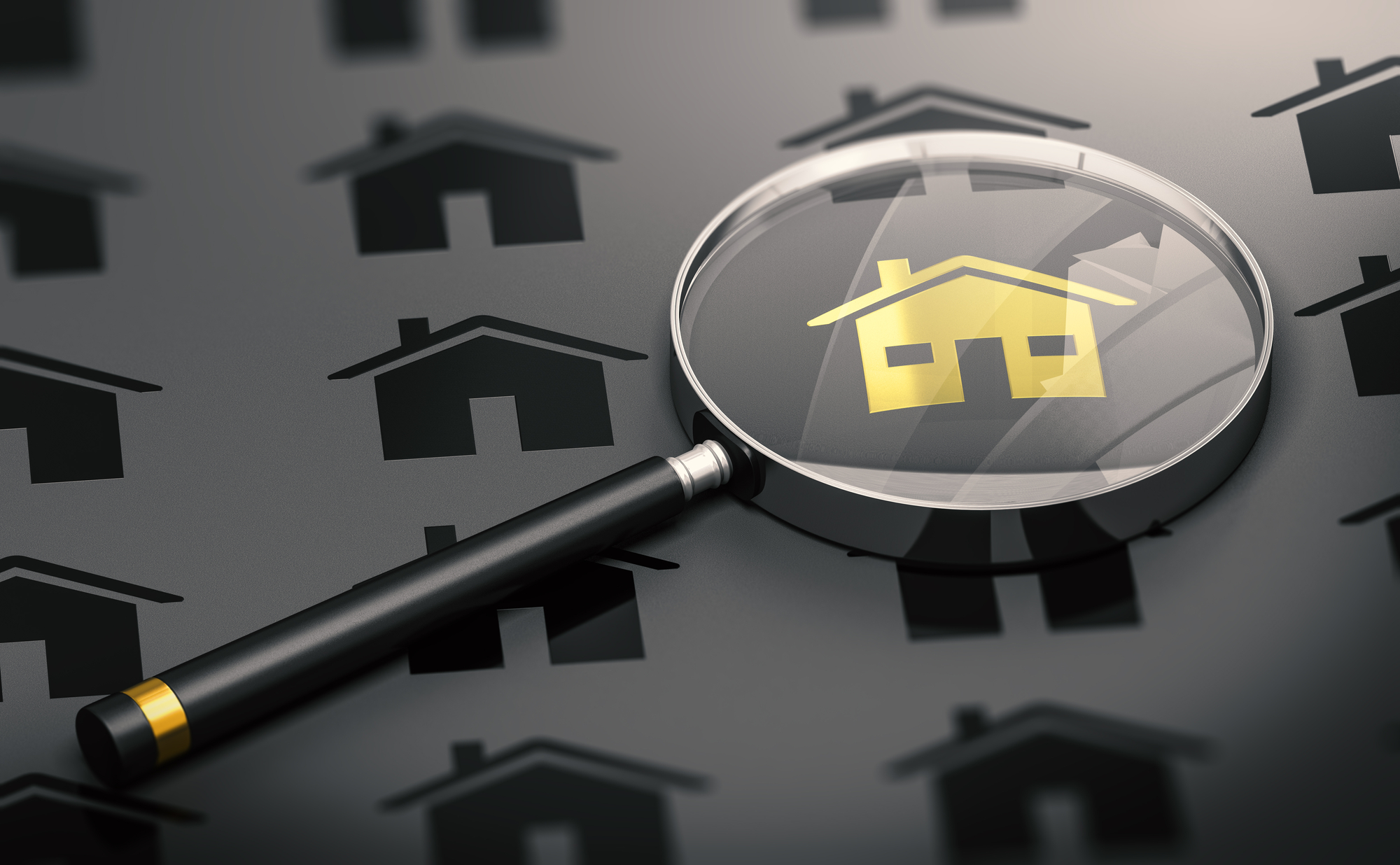 Many black properties and one golden house standing out from the crowd and a magnifying glass