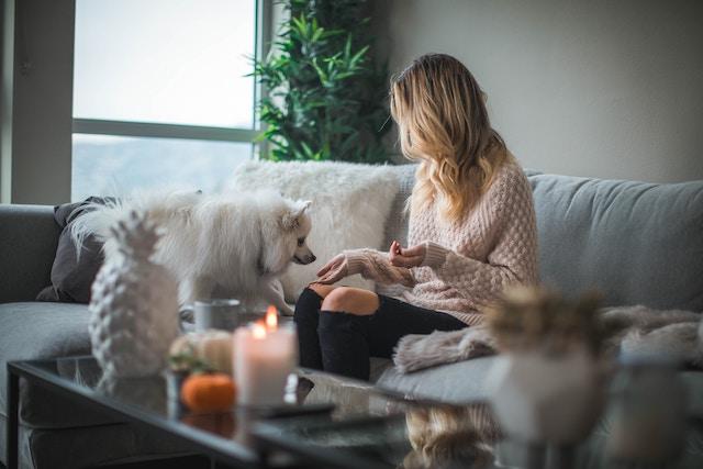 pets-home